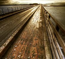 Wooden Bridge - Bull Island by Gerry Chaney