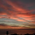 Red Sky At Night by judygal