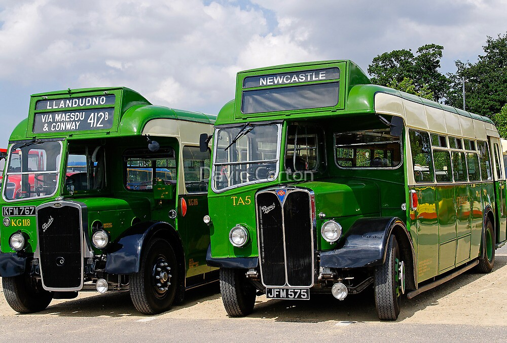 A pair of green vintage buses by buttonpresser
