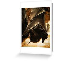 Flying Fox Greeting Card