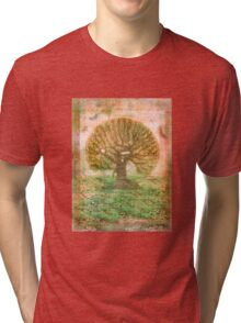 Tree of Life - green sea - earth colours Tri-blend T-Shirt