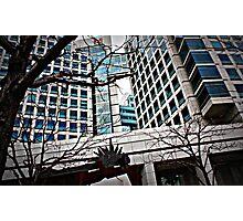 adobe headquarters Photographic Print