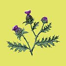 Thistle on Lime by ThistleandFox