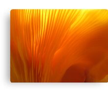 Flame-colored Lamellae Canvas Print
