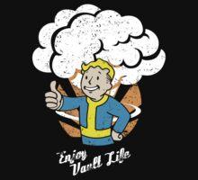 Enjoy Vault Life by declin93