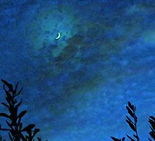Quarter Moon by HolidayMurcia