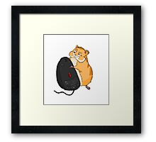 Hamster and a Mouse Framed Print