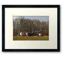 Lined up herd Framed Print