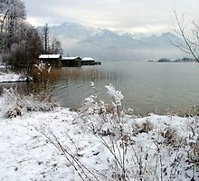 Lake Kochelsee Winter 2009/10 by Daidalos