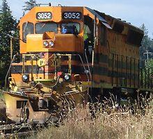 Resting Train by Mike Edmondson