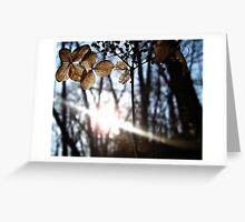 Wondrous Bokeh Greeting Card