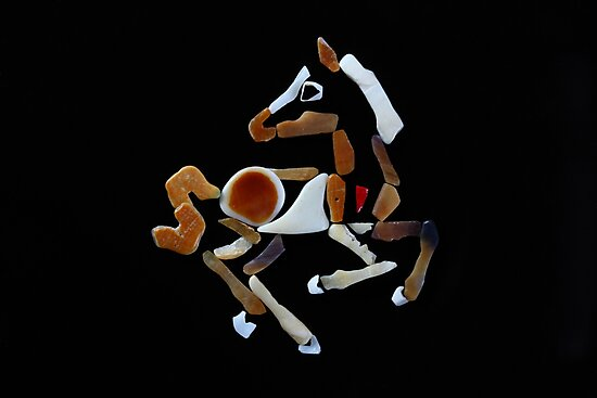 Wild Colt by Simone Lovack