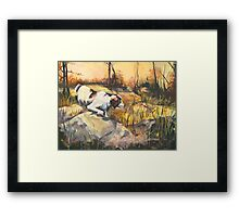 On Point - Late Afternoon Hunting Framed Print