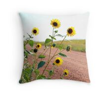 Sunflower along country road Throw Pillow
