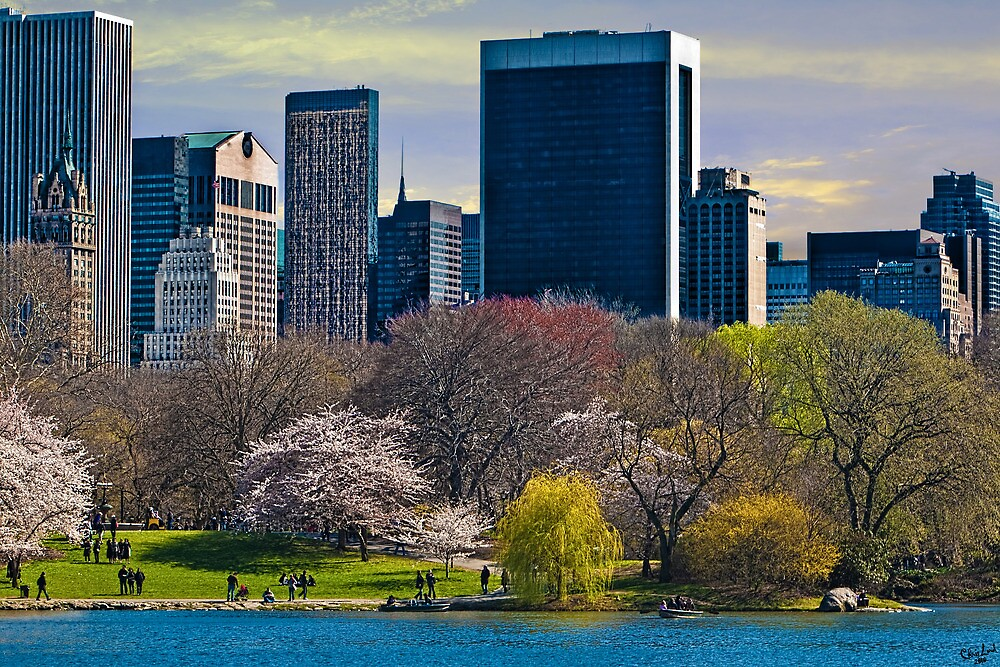 Springtime Arrives In Central Park, New York, USA by Chris Lord