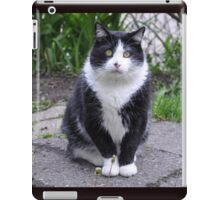 Teddy The Ninja Cat iPad Case/Skin