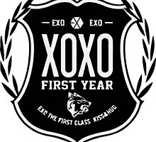 EXO FIRST by nchaos