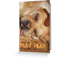 Play Dead... Greeting Card