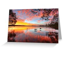 Lake Doonella - Noosa Heads Greeting Card