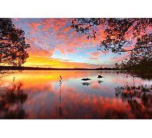 Lake Doonella - Noosa Heads Photographic Print