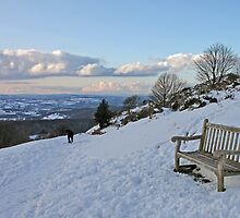 Bench with a view by LisaRoberts