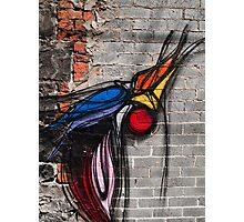 Graffiti Bird on Red and Grey Brick Wall Photographic Print