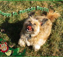 Happy St. Patrick's Day! by vigor