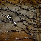 skeleton key in vine by HeatherMScholl