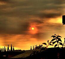 Sun and Smoke by Bob Wall