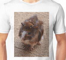 Guinea Pig Unisex T-Shirt