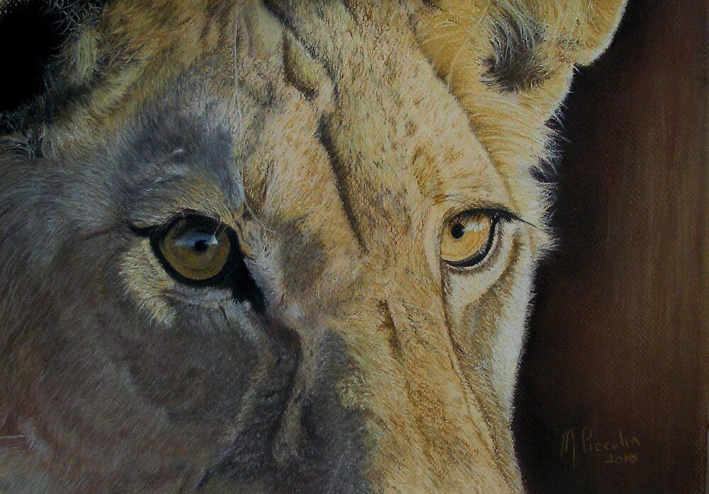 Lion(ess) Eyes by Marlene Piccolin
