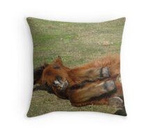 Rolling Pony Throw Pillow