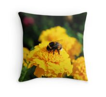 Springtime Delight Throw Pillow