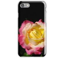 Magenta and Yellow Rose iPhone Case/Skin