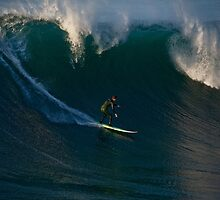 Dropping in, La Jolla Cove by Robert Whiteman