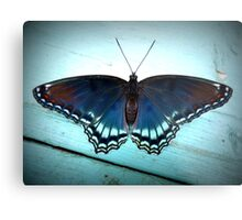 Red-spotted Purple Butterfly Metal Print