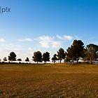 Tucson, AZ - Silverbell Lake by pandapix