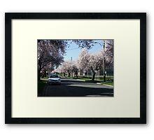 Victoria Spring Framed Print
