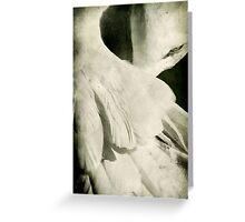 Flock Greeting Card