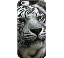 I think it is almost suppertime.. Wait a minute..I heard the door open...FOOD!!!!!  iPhone Case/Skin