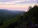 View from Brockway Mountain by Karen Karl