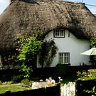 lovely thatched cottage, Figheldean, Wiltshire by BronReid