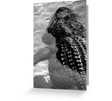 Gator Country Greeting Card
