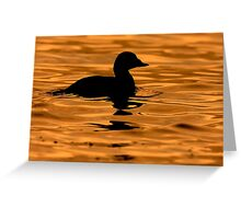 Scoter Silhouette Greeting Card