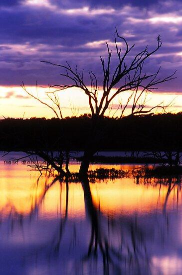 Menindee Magic.... NSW by JennyMac