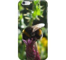 thistle bee iPhone Case/Skin