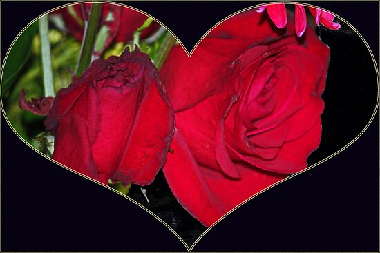 My love is like a faded rose by E.R. Bazor