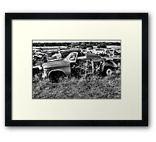 Stripped ~ 2    ( BoneYard Series ) Framed Print