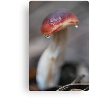 Endearing Canvas Print