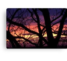 bonnie winter sunset no.3 Canvas Print